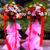 單層開業花籃,頂部8朵紅色扶郎花,8朵粉色扶郎花,8朵黃色扶郎花,2朵白百合,4朵粉百合間插,散尾葉一圈,竹籠用粉色棉紙遮擋,棉紙需要作出層次,