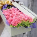 守候-19朵粉色康乃馨禮盒