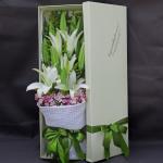 快乐无限-6枝多头白百合礼盒