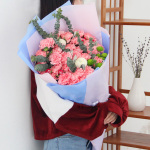 温情祝福-33朵粉色康乃馨混搭花束