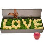 圣诞专款:爱的思念+苹果