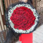 33朵紅玫瑰-濃情