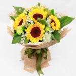 阳光使者-9朵向日葵