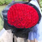 爱的温暖-99朵红玫瑰
