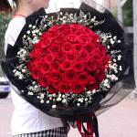 守护甜心-52朵红玫瑰