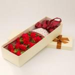 恩情无限-11朵红色康乃馨礼盒