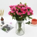 基地直送-10枝粉红女郎多头玫瑰